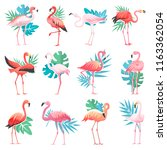 flamingo vector tropical pink... | Shutterstock .eps vector #1163362054