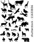 vector animals | Shutterstock .eps vector #11633836