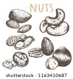 nuts collection. nuts set... | Shutterstock . vector #1163410687