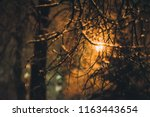 night winter landscape evening...   Shutterstock . vector #1163443654