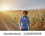 handsome farmer with straw hat...   Shutterstock . vector #1163454244