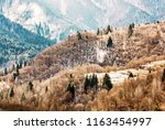 deciduous and coniferous forest ... | Shutterstock . vector #1163454997