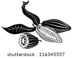 vector illustration cocoa beans | Shutterstock .eps vector #116345557