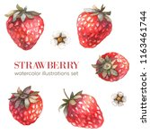 strawberry illustration.... | Shutterstock . vector #1163461744