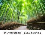 arashiyama bamboo grove forest... | Shutterstock . vector #1163525461