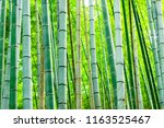 arashiyama bamboo grove forest... | Shutterstock . vector #1163525467