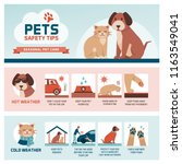 Stock vector seasonal pet safety tips infographic with icons how to protect your pet from heat and cold in 1163549041
