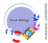 beach holiday  camera  swimsuit ... | Shutterstock .eps vector #1163564554