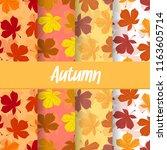 a set background of autumn fall ... | Shutterstock .eps vector #1163605714