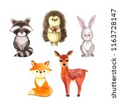 Stock photo cute woodland watercolor animals isolated on white background hand drawn cute illustration brush 1163728147