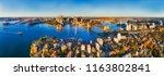 sydney harbour shores in view... | Shutterstock . vector #1163802841