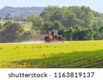 rural agricultural scenery with ... | Shutterstock . vector #1163819137