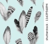 feathers sketch graphics... | Shutterstock . vector #1163956894