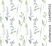 seamless pattern with... | Shutterstock . vector #1164004531
