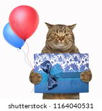 the cat holds a gift box and... | Shutterstock . vector #1164040531
