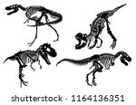 Graphical Set Of Dinosaur...