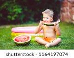 theme summer seasonal food...   Shutterstock . vector #1164197074