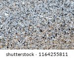 small sea shells on sand for... | Shutterstock . vector #1164255811