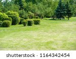 urban photography  a lawn is an ... | Shutterstock . vector #1164342454