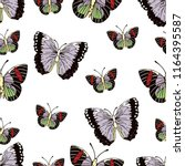 butterfly cartoon drawing... | Shutterstock .eps vector #1164395587