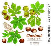 chestnut vector isolated | Shutterstock .eps vector #1164404497