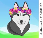 husky with a flower wreath | Shutterstock .eps vector #1164484117