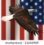 Close Up Of Bald Eagle Flying...