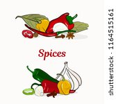 spices in border. hand drawing. ...   Shutterstock .eps vector #1164515161