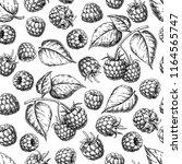 raspberry seamless pattern.... | Shutterstock .eps vector #1164565747