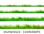 green grass border isolated on... | Shutterstock . vector #1164636691