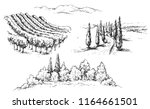 hand drawn rural scene... | Shutterstock .eps vector #1164661501