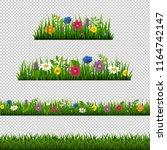 grass border with flower...   Shutterstock . vector #1164742147