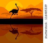 Running ostrich bird in wild mountain nature landscape background illustration vector - stock vector