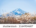 colorful autumn season and... | Shutterstock . vector #1164904687