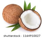 coconut isolated on white... | Shutterstock . vector #1164910027