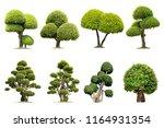 tako trees bending.isolated... | Shutterstock . vector #1164931354