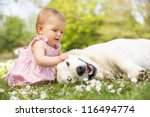 baby girl in summer dress... | Shutterstock . vector #116494774
