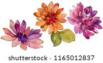 watercolor colorful african... | Shutterstock . vector #1165012837