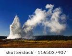 old faithful geyser erupting ...   Shutterstock . vector #1165037407