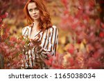 autumn woman in autumn scene... | Shutterstock . vector #1165038034