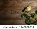 beautiful white rose on wooden... | Shutterstock . vector #1165088614