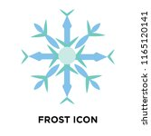 frost icon vector isolated on... | Shutterstock .eps vector #1165120141