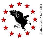 alaska,america,american,animal,bald,beak,beauty,bird,black,black background,blue,brown,close,conceptual,culture