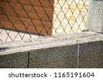 little lizard on the wall. | Shutterstock . vector #1165191604