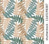 fern frond herbs  tropical... | Shutterstock .eps vector #1165198387