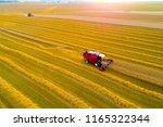 combine harvester on field of...