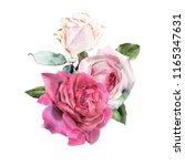 bouquet of roses  watercolor ... | Shutterstock . vector #1165347631