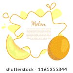 melon poster with frame and... | Shutterstock .eps vector #1165355344