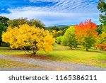Small photo of Colourful autumn in Mount Lofty, Adelaide Hills, South Australia
