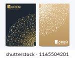 modern vector template for... | Shutterstock .eps vector #1165504201